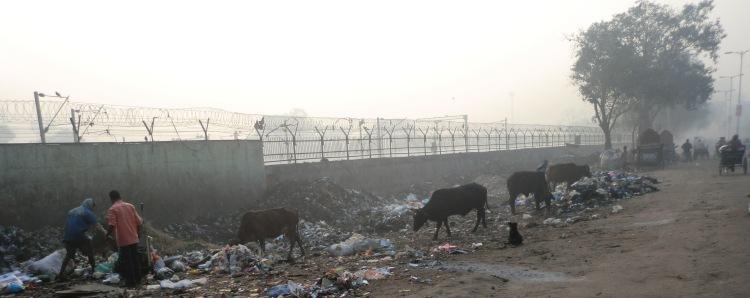 Zwischen schwelendem Müll wird nach verwertbaren Resten gesucht. Foto: Marta Wrona