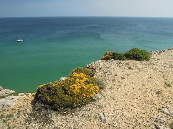 Die einzigartige Flora am Ende Europas steht unter Naturschutz.