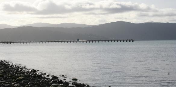 Blick vom Parkplatz Korokoro Gateway auf Lower Hutt bei Wellington. (Foto: Lisa Kügel)