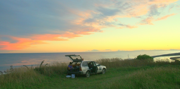 Dämmerung an der Küste südlich von Kaikoura auf der Südinsel. (Foto: S. Hoffmann)