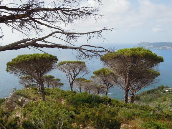 Zur Freude von Aktivurlaubern durchziehen zahlreiche Wanderwege Liguriens Küstenregion.